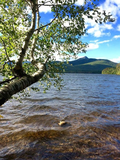 Chocorua Lake, just a short walk through the woods from our house.
