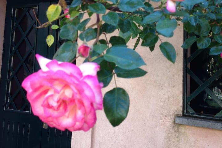 Cortile delle Rose/Antico casale Parco dell'Etna - Viagrande - Casa