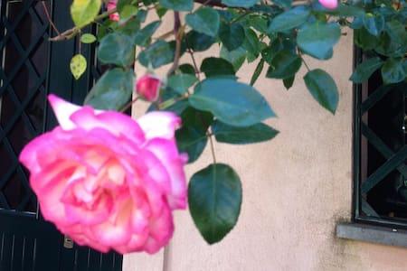 Cortile delle Rose/Antico casale Parco dell'Etna - Viagrande - บ้าน