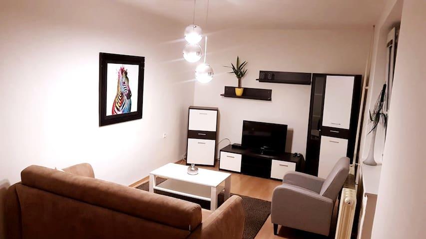 Bright apartment in a quiet central location