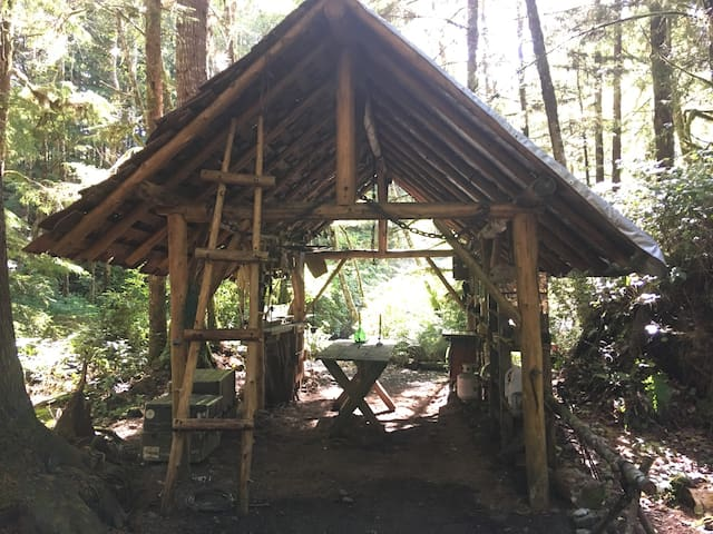 Olympic Coast Camp
