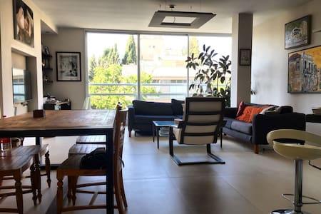 Private Room in Spacious flat in central Tel Aviv
