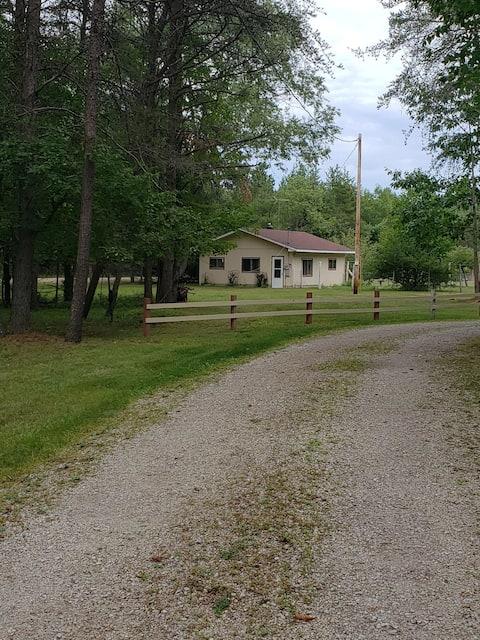Quiet, cozy cabin in the woods