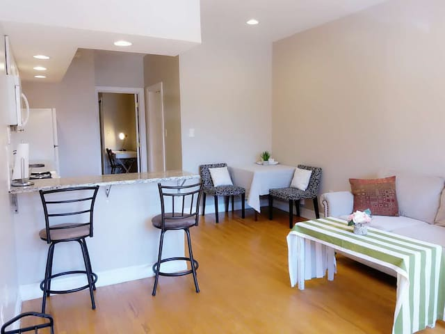 Gorgeous apartment in Center City/South Street