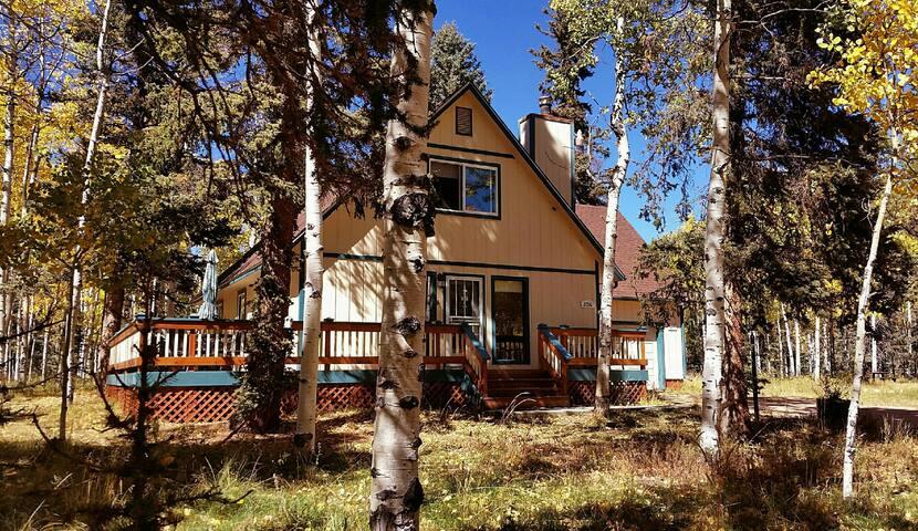 Lovely cabin on 5 acres in aspen grove