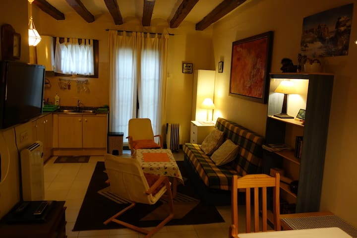 Downtown apartment La Seu d´Urgell
