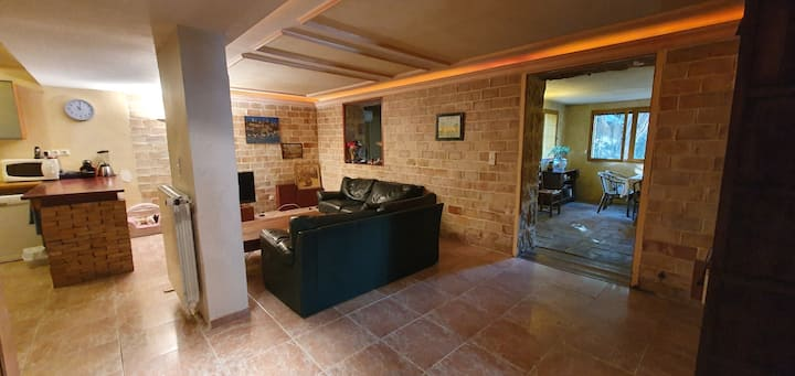 Mougins, appartement 2 chambres, proche Cannes.