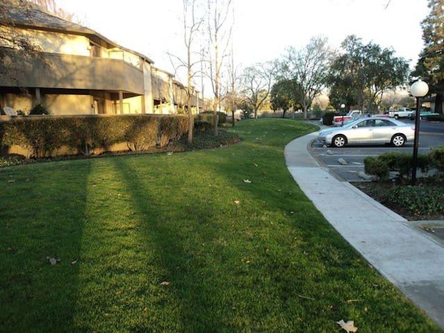 Quiet 1BR in Milpitas - Milpitas - Apartment