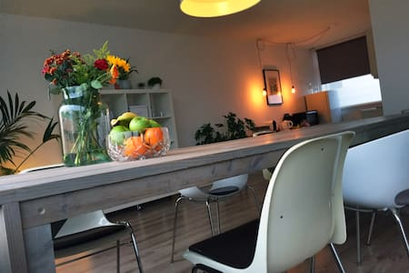 Spacious and comfortable apartment with bathtub - Haarlem