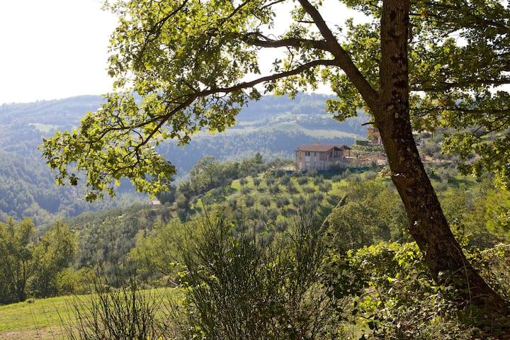 Villa MARIO & Friends-AMAZING LOCATION
