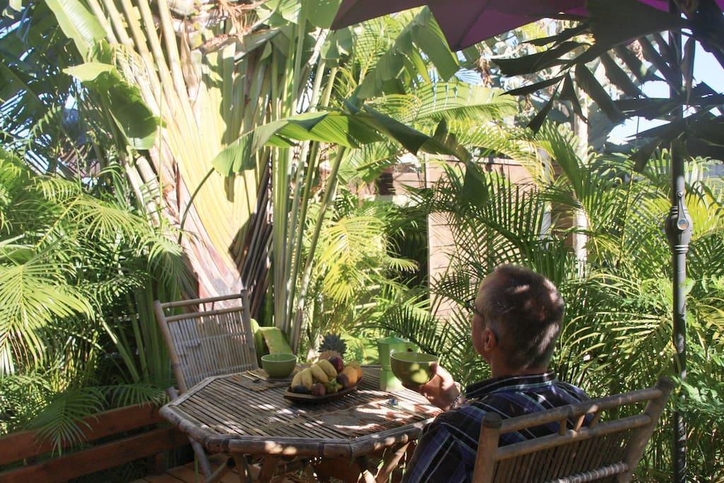 Petit déjeuner sur la terrasse ...