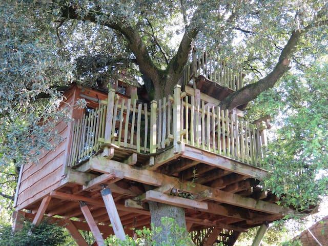cabane perchéé MIRA - Villiers-sur-Chizé - Cottage