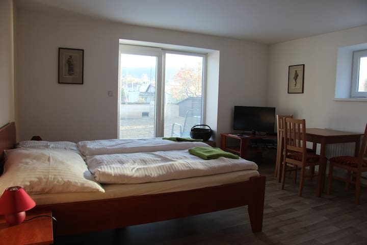 Vila Aneta - double room - Luhačovice - วิลล่า