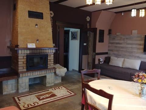 Camera cu Semineu ( Fireplace room )