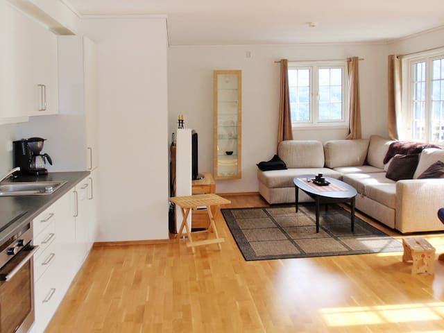 Holiday apartment in Röldal for 6 persons