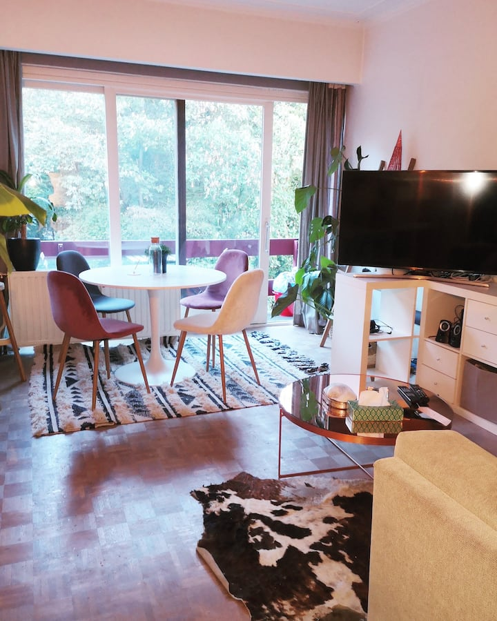 Modern and Cosy Studio in Brussels