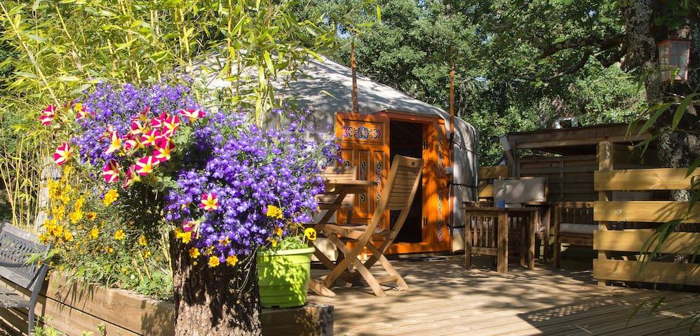 Naturalodge : Yourte entre Ardèche Sud et Provence