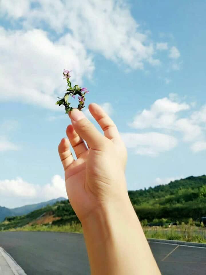 背靠王仙岭,鸟语花香空气清新,去东江湖必经之地