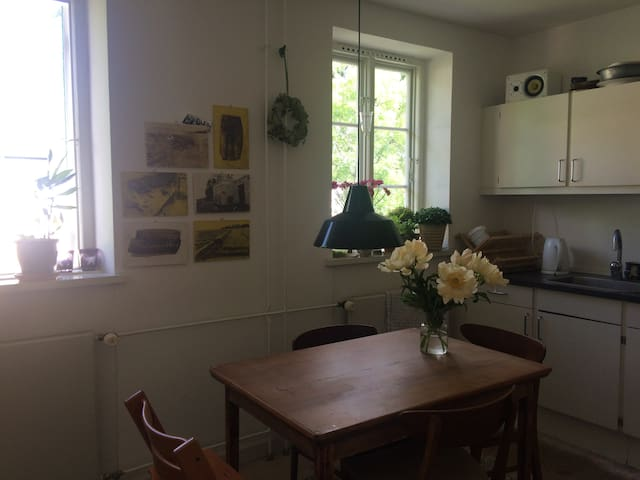 Cosy apartment in the heart of Østerbro.