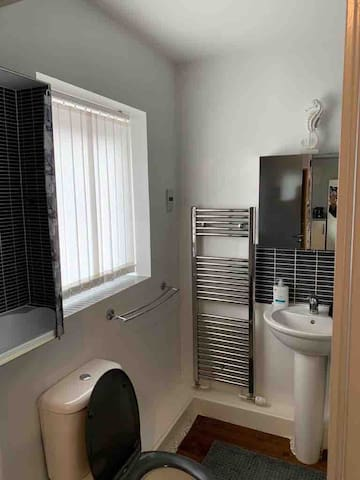 Toilet, cabinets and washing basin.