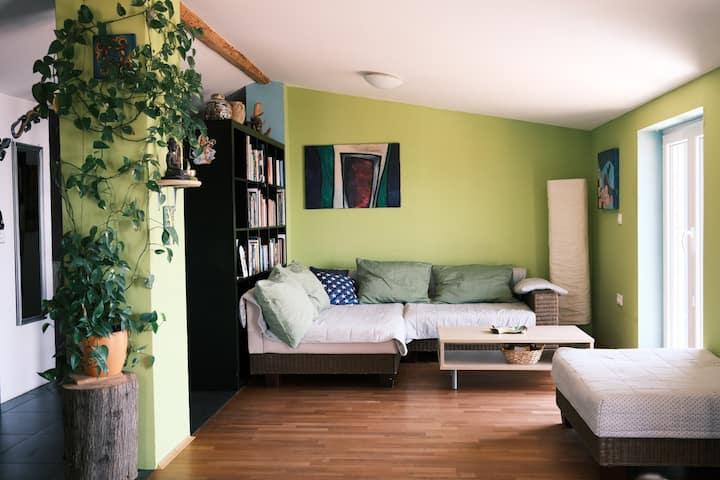 MiraMar - Extraordinary sea view apartment