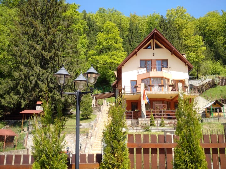 Brasov villa - stunning mountain views and sauna