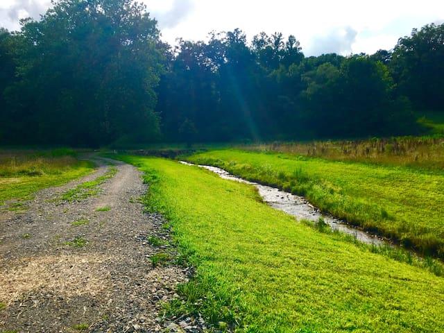 Acorn Creek  splits the property headed straight to Lake Burton