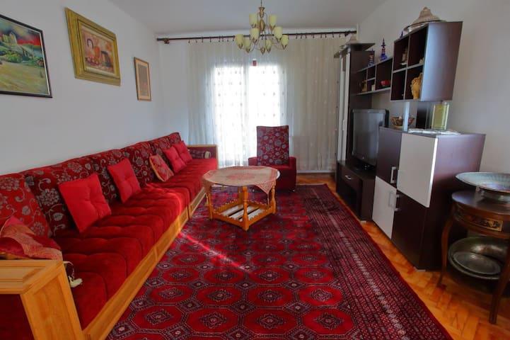Sarajevo house 2 - Sarajevo - House