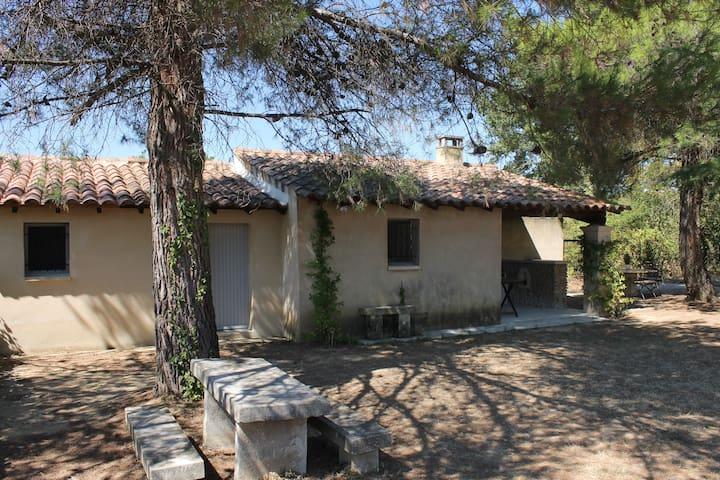Le cabanon en Provence - Oppède - House