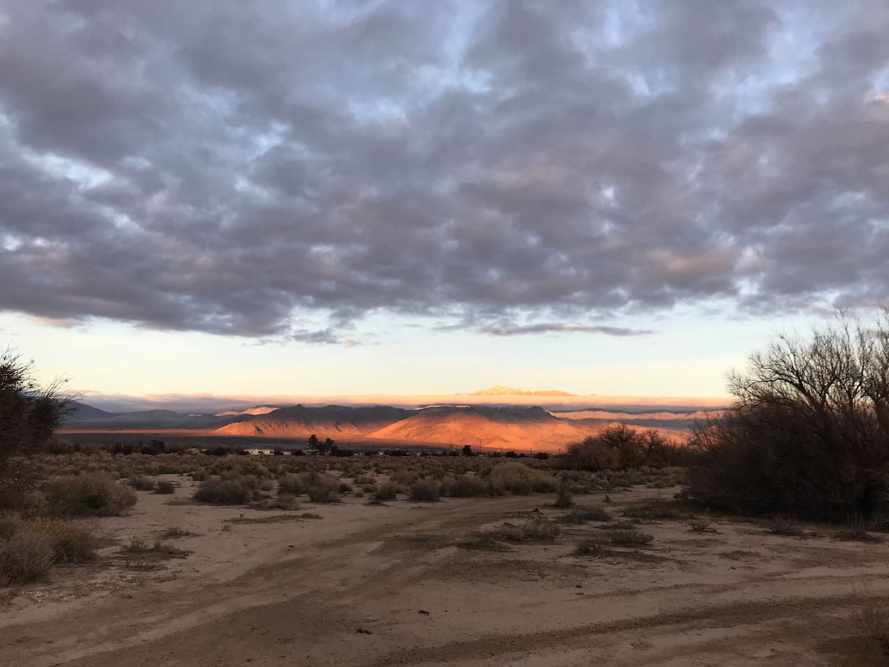 Just across the street is a natural area to catch the sunset illuminate Mt Charleston! Spot coyotes, roadrunners, quail, rabbits and lizards here too!