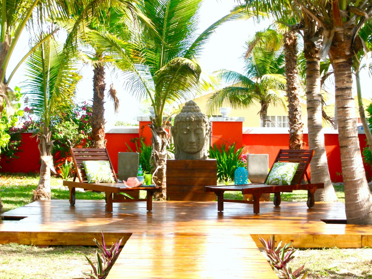 The Buddha Lounge under Coconut Palms