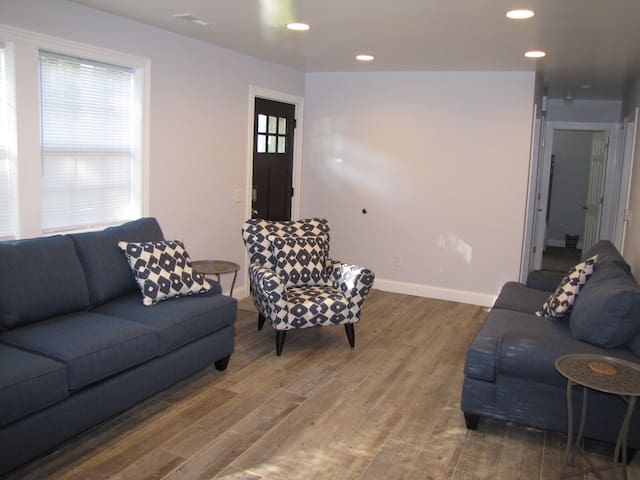 Living room with pull out queen size bed with memory foam mattress.