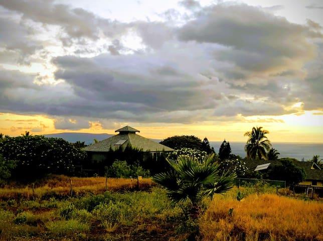 South Maui Oceanview Solo Cottage