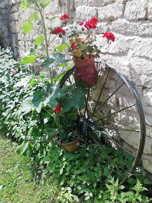 cour et jardins à disposition