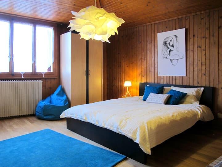 Savièse: balcon ensoleillé sur les Alpes