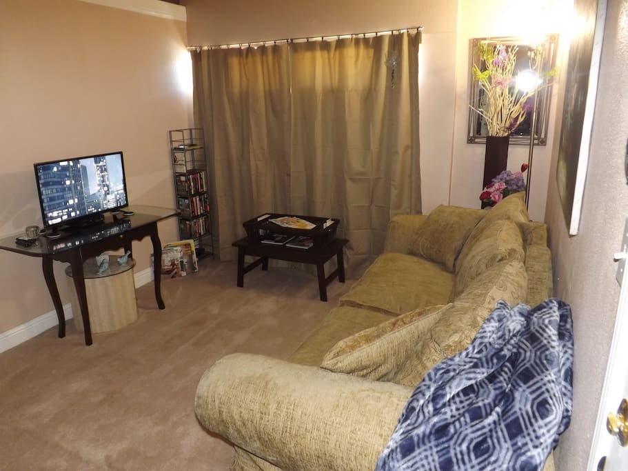 Comfortable Living area with full Sofa Bed. Roku TV with Netflix and Huluplus built in. Wifi.