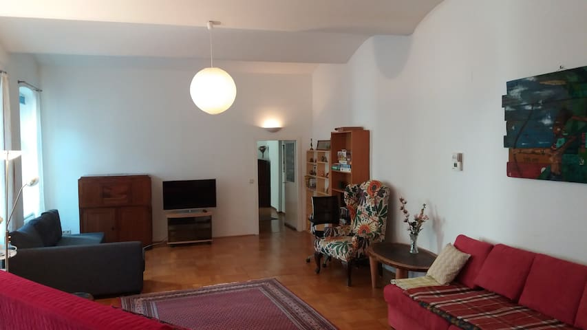 Atelier in walking distance from Museumsquartier - Viena - Loft