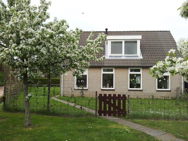 Villa Schelphoek Zeeland - Wolphaartsdijk - 一軒家