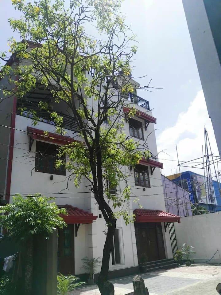 斯里兰卡 加勒 客栈 熊猫驿站 panda house