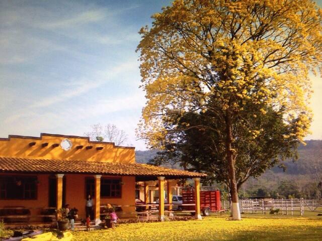 Hacienda Las Cataratas - Cabaña Macuilí - Palenque - Nature lodge
