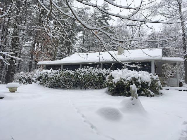 Enchanted Woodstock Cottage