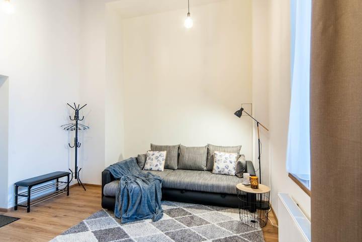 Cozy industrial design apartment near city center!