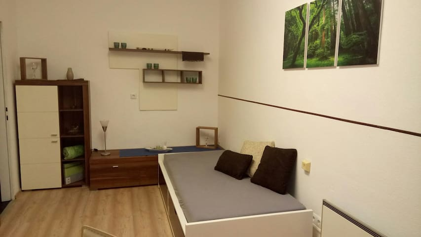 Small apartment - central - Steyr am Nationalpark - Steyr - Apartment