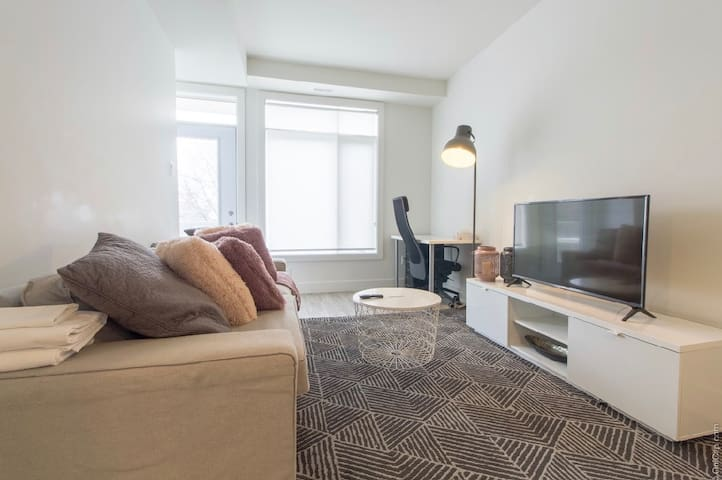 Brand New Lansdowne Park Condo-Steps to Canal