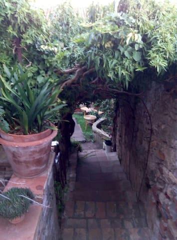 Capalbio vista mare - Capalbio - Casa