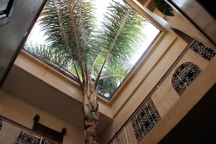Riad Alamine location  en exclusivité - Marrakech Medina