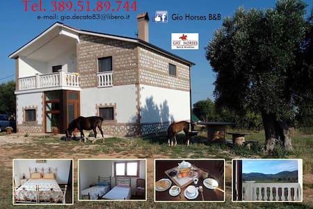 Gio Horses - San Nicandro Garganico