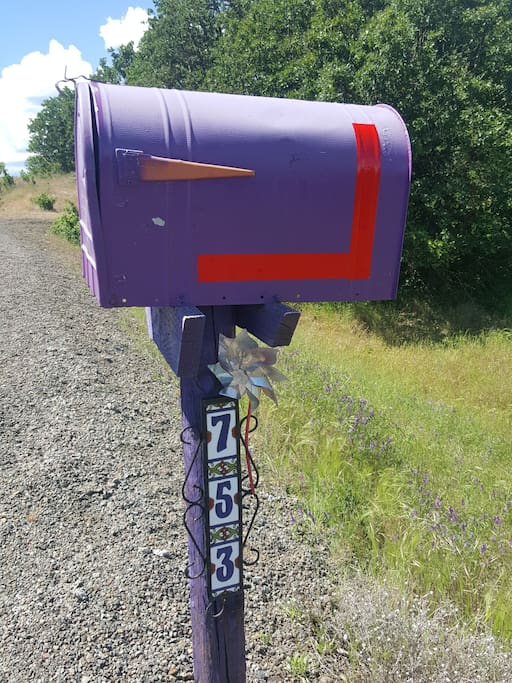 Look for the Purple Mailbox on your right about 3/4 mile up Ironwood Drive. My driveway is directly across on the left.