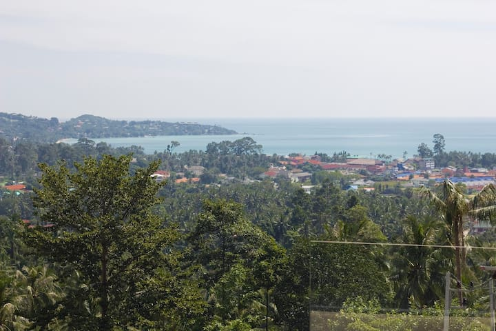 Panoramic view on the Lamaï Bay and the splendid coconut grove
