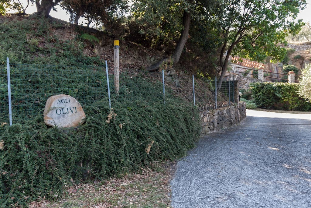 entrance in the property